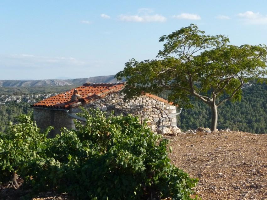 Tautavel-2-appelation-66-casot-Côte-du-roussillon-village-Cucugnan-vigneron-domaine